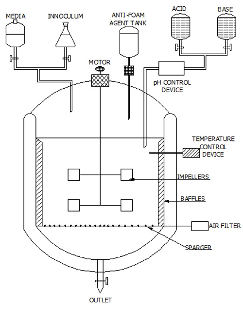 Design of a Fermentor | Industrial Microbiology